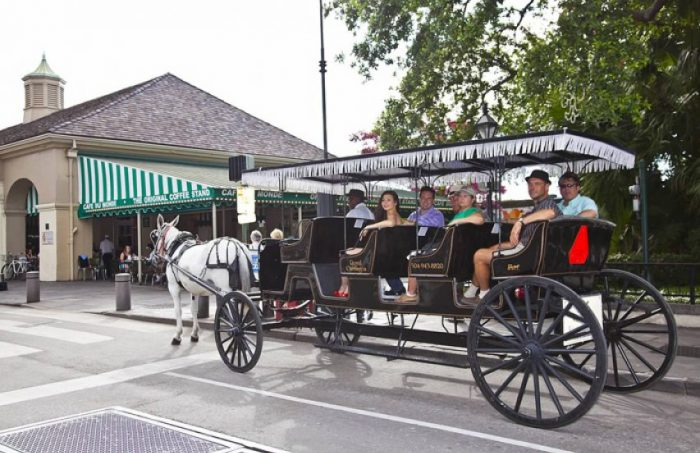 Image Result For Garden District New Orleans Carriage Tours