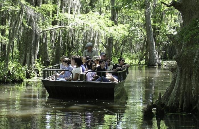 Honey Island Swamp Tours Discount